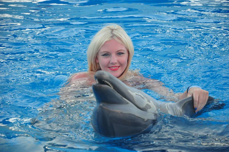 Swimming with Dolphins Excursion | Sharm El Sheikh