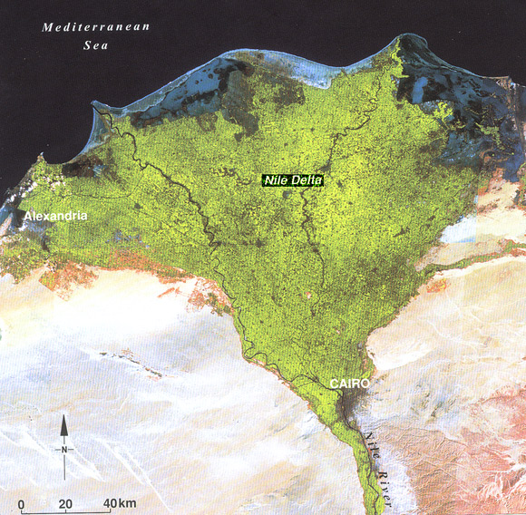 Satellite image for the Nile Delta in Egypt