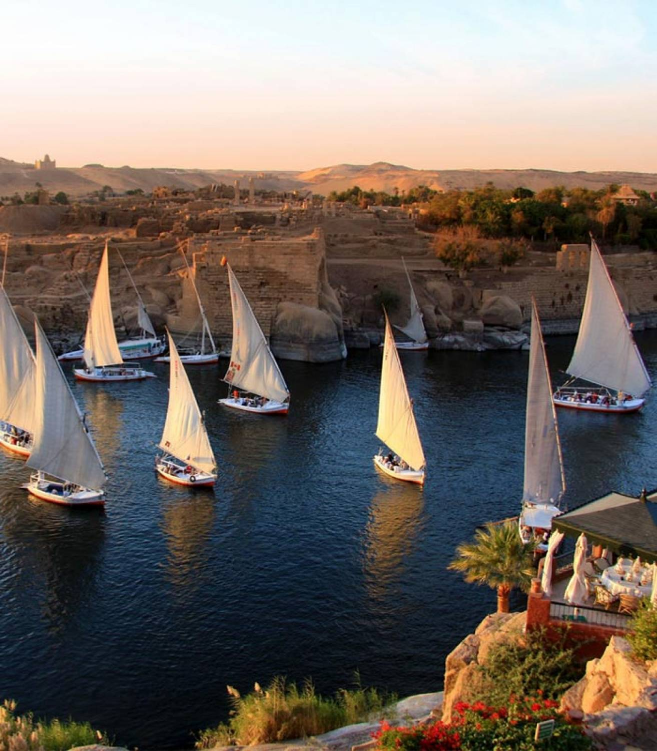 Day Recreational Tours in Aswan