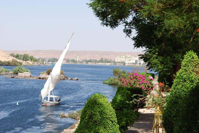 Felucca Ride & Botanical Garden Half Day Tour