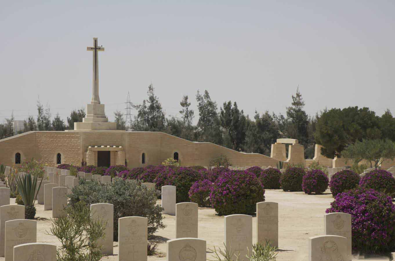 Day Tour to World War II Cemeteries in El Alamein from Alexandria Port