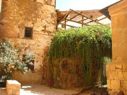 St Catherine Monastery - Burning Bush
